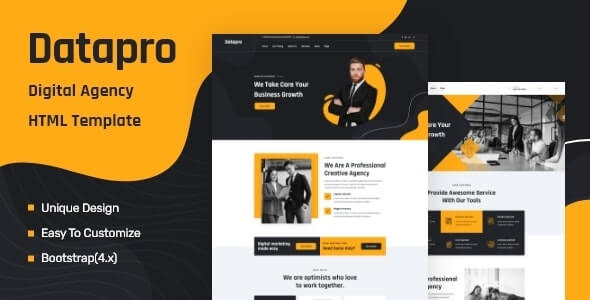 Datapro v1.0 - One Page Agency HTML Template