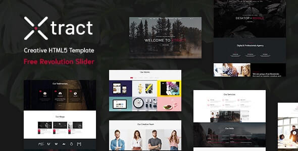 Xtract v1.0 - Creative One Page Template